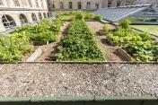 [SIPLAST - Un potager planté sur un toit-terrasse au cœur de Paris pour trois ans d'expérimentation]